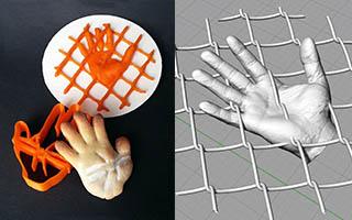 Mani nella rete
